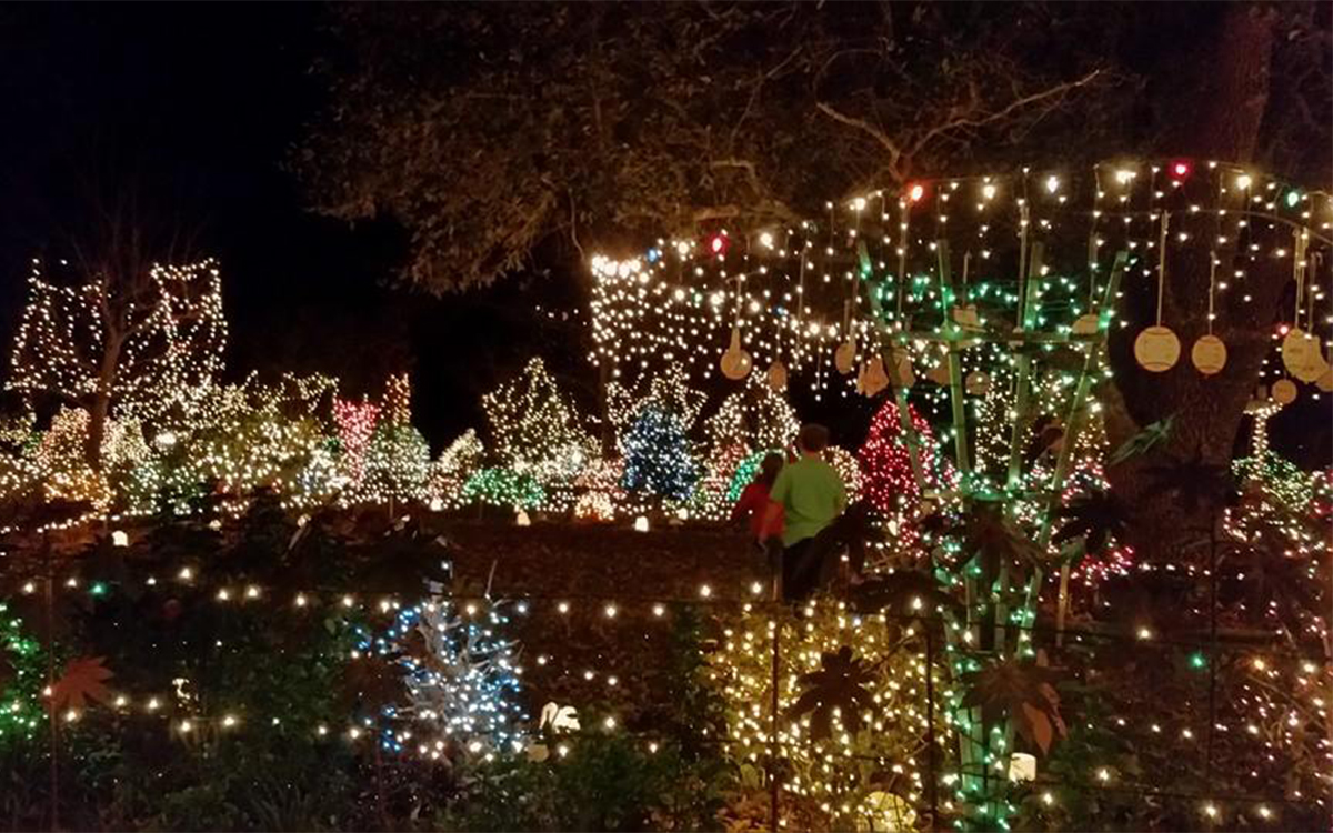 Hattiesburg Zoo Christmas Lights 2021 Lewis Lights In Purvis Remains All Aglow For 30 Years Hubcityspokes
